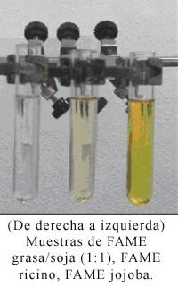 Investigadores de la UPM producen biodiésel con una mezcla de grasa animal de baja calidad y aceite de soja