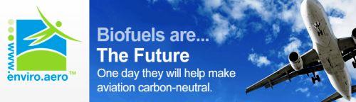 Los biocombustibles sostenibles en vuelos comerciales en la Cumbre de Aviación y Medio Ambiente en Ginebra