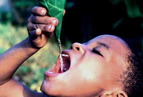 El agua dulce sólo representa el 3 porciento de los recursos hídricos del planeta