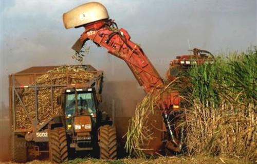 Oportunidades Estratégicas de los Biocombustibles en América Latina, nuevo análisis de Frost & Sullivan