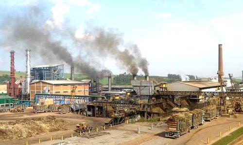 Planta de producción de biocombustibles de segunda generación