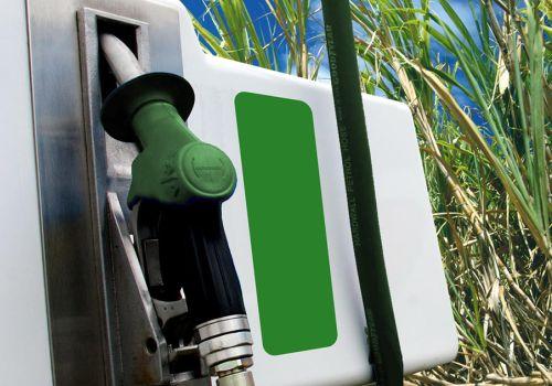 ¿Se considera que la producción de biocombustibles es un buen negocio?