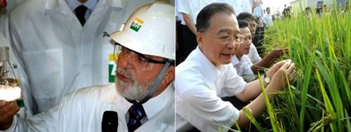 China y Brasil, dos países emergentes, dos formas de ver al medio ambiente