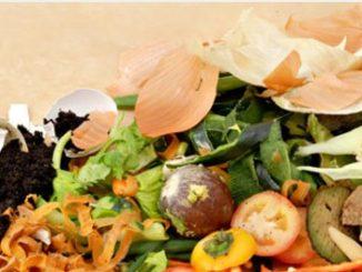 El compost. Cómo realizar este abono orgánico con residuos hogareños