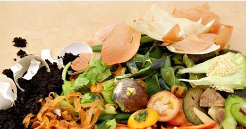 El compost, reutilizando los residuos orgánicos del hogar