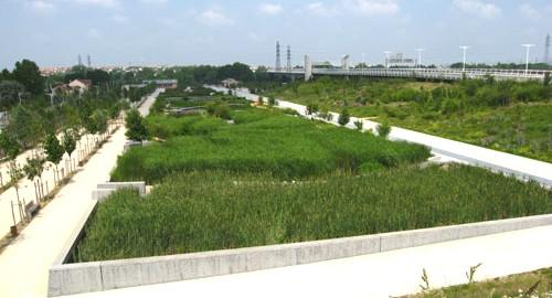 Biorremediación con vegetales, fitorremediación de aguas residuales