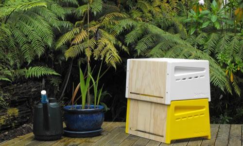 Colmena urbana para obtener miel recién cosechada