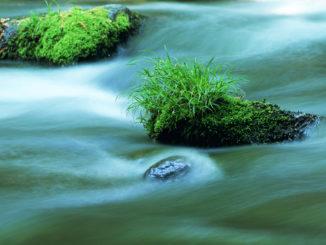 Qué es la energía osmótica