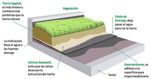Construir un techo verde
