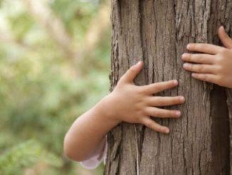 Importancia de la educación ambiental