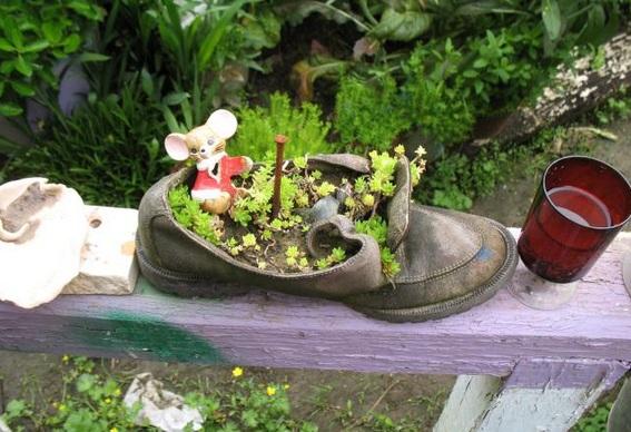 #7 Un zapato viejo