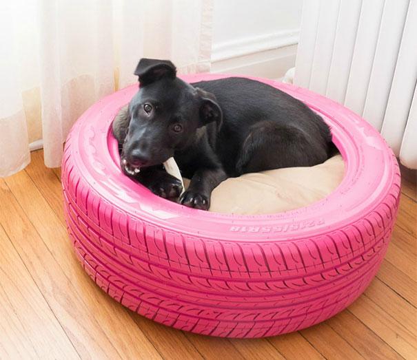 Una cama para mascota con un neumático
