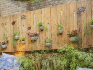Diseño, creación y mantenimiento de un jardín ecológico