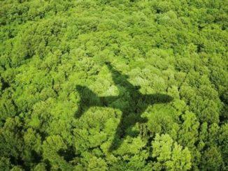 Responsabilidad como turistas con el medio ambiente