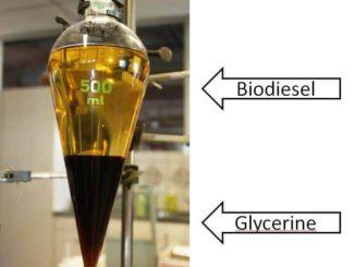 Transformar glicerina en biodiesel