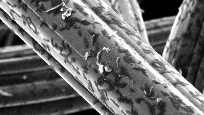 Bacterias manipuladas químicamente pueden producir electricidad