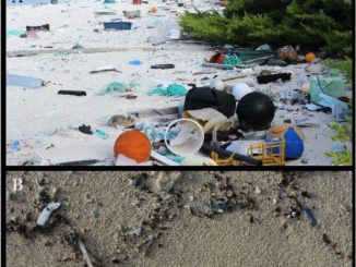 Isla de basura en el Pacífico Sur