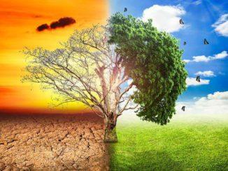 Metas para evitar el apocalipsis del cambio climático