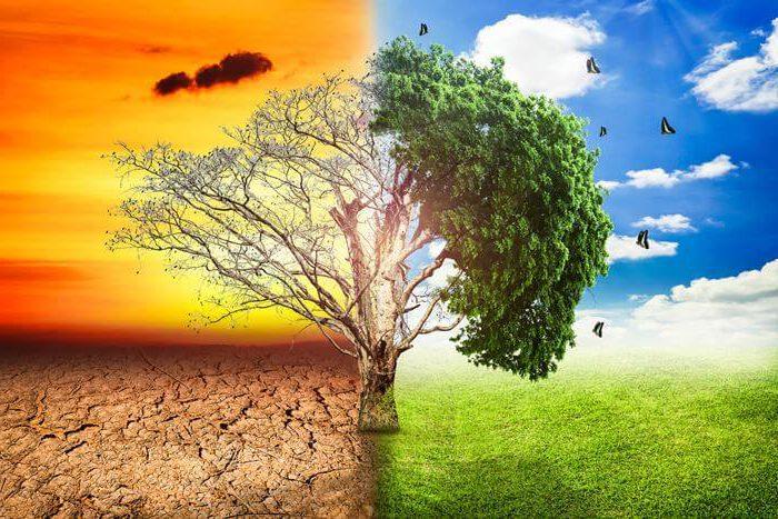 Apocalipsis Del Cambio Clim 225 Tico Y Seis Hitos Para Evitarlo