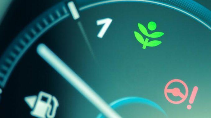 Consideraciones acerca de los biocombustibles celulósicos