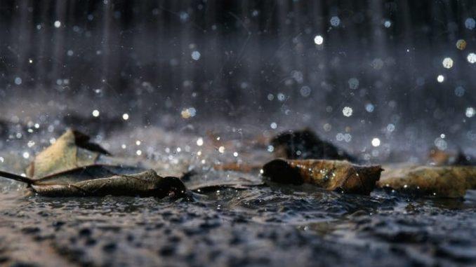 Lluvia ácida. Causas, efectos y soluciones