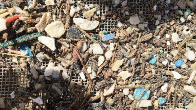Bolsas de plástico y el efecto invernadero