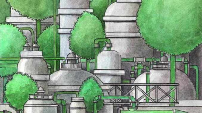 Gasolina de celulosa. Convertir residuos de plantas en combustible