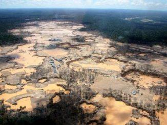 Récord de destrucción de la selva tropical en Perú por la minería de oro