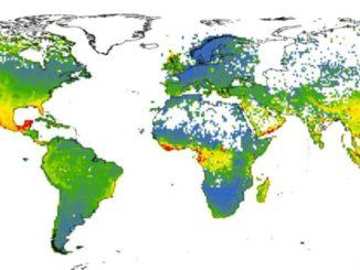 Aprendizaje automático para detectar necesidades de conservación de las plantas