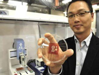 Avances en productos electrónicos sostenibles