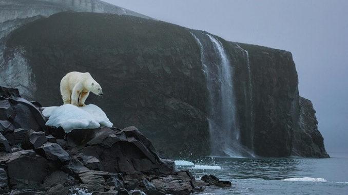 Los responsables del cambio climático más dramático en millones de años