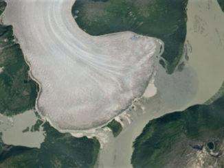 Glaciar Taku 2019