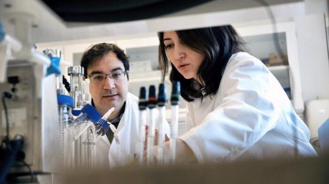 Investigadores universitarios daneses convierten el aceite de cocina en biocombustible utilizando enzimas de algas