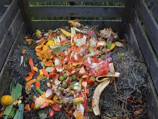 Elabore compost en casa