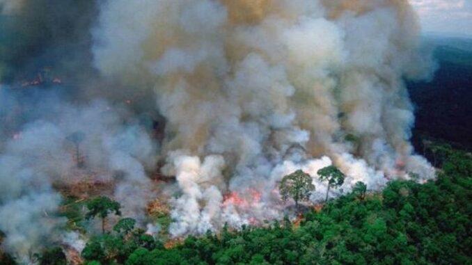 Los incendios no regulados afectan severamente a la Amazonia