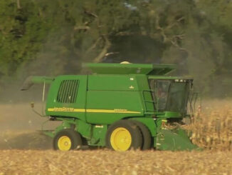 Fiberex convierte fibra de maíz en etanol