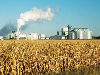 A medida que la demanda de petróleo se desploma más refinerías optan por producir biocombustibles