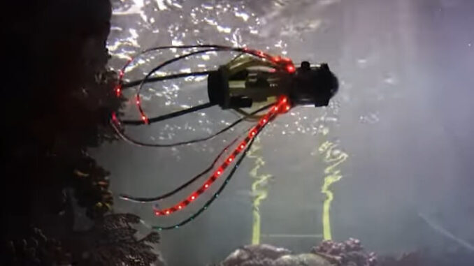 El robot calamar se mueve y toma fotografías de corales y peces