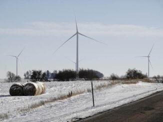 la energía éolica con crecimiento récord en los últimos 5 años