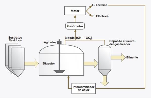 ¿Qué es el Biogás?, digestión anaeróbia, características y usos del biogás
