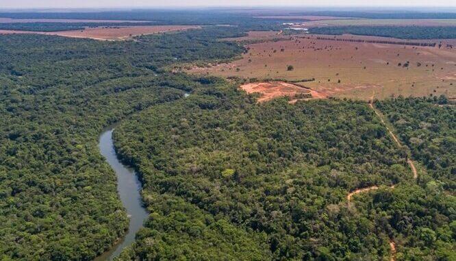 MAPE: Moratoria de la Soja Amazónica